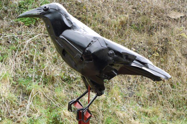 crow crows raven ravens rook rooks bird birds birdwatching recycled sculpture scrap art green eco recycledart junk rubbish hubcap
