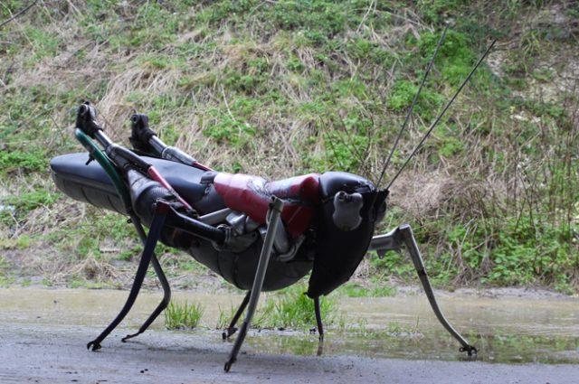 recycled sculpture scrap art green eco recycledart junk rubbish hubcap animal insect grasshopper cricket