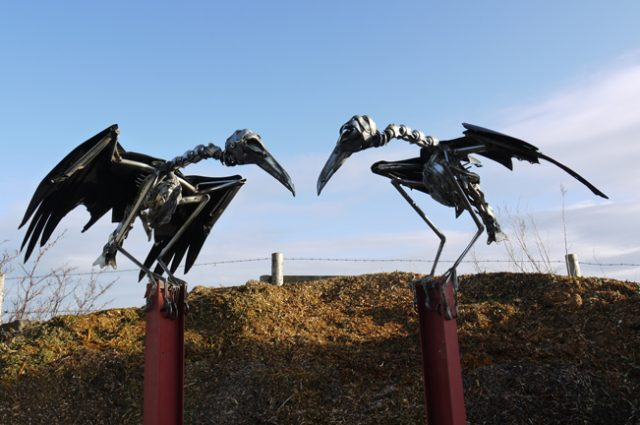 crow crows raven ravens rook rooks bird birds birdwatching recycled sculpture scrap art green eco recycledart junk rubbish hubcap